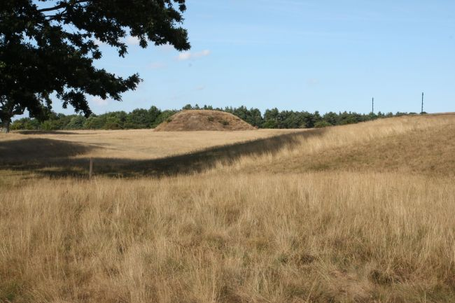Mounds at Sutton Hoo