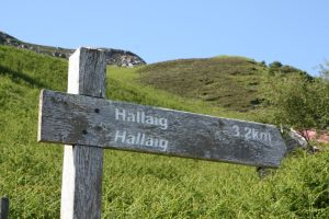 Hallaig sign